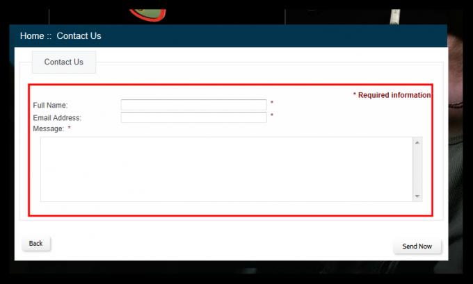 Kontaktni obrazec na lažni spletni trgovini