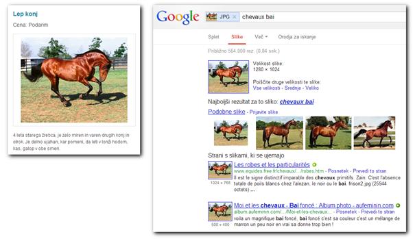 Po nasvet se je obrnila uporabnica, ki je našla mali oglas za konja. Plačati je bilo potrebno zgolj stroške prevoza iz Romunije, saj so konja želeli podariti. Seveda je šlo za lažni oglas, slika konja je bila kar skopirana iz interneta.
